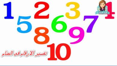 Photo of تفسير الارقام فى المنام للشيخ سيد حمدي