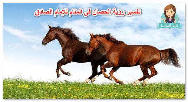 تفسير رؤية الحصان فى المنام للإمام الصادق 1